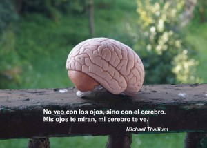Mi cerebro te ve