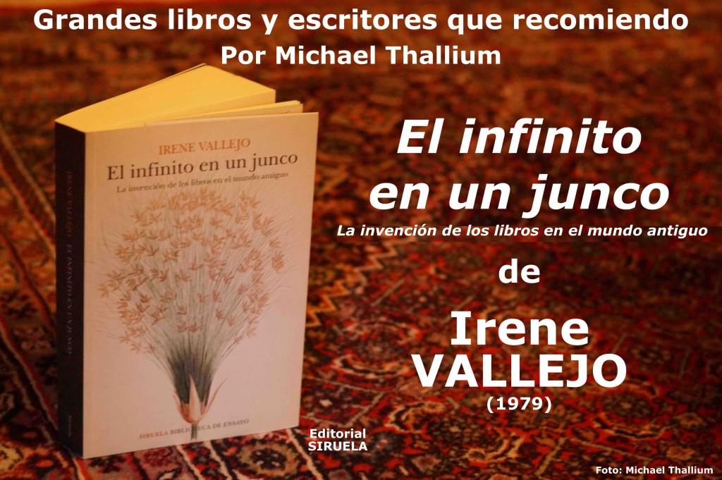 Irene Vallejo - El infinito en un junco