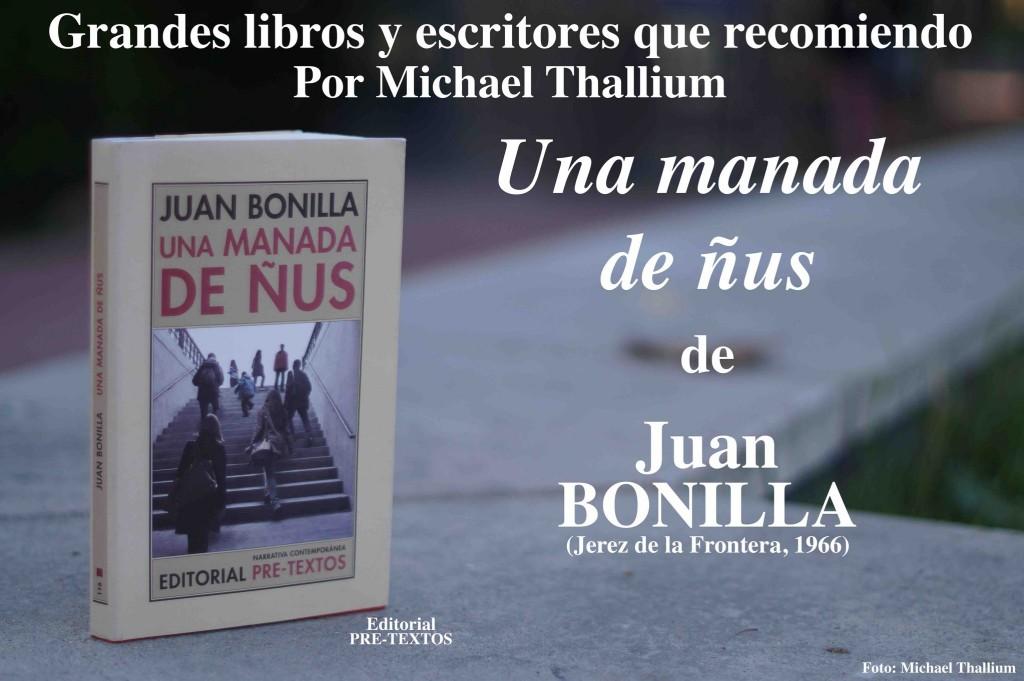 Bonilla - Manada ñus